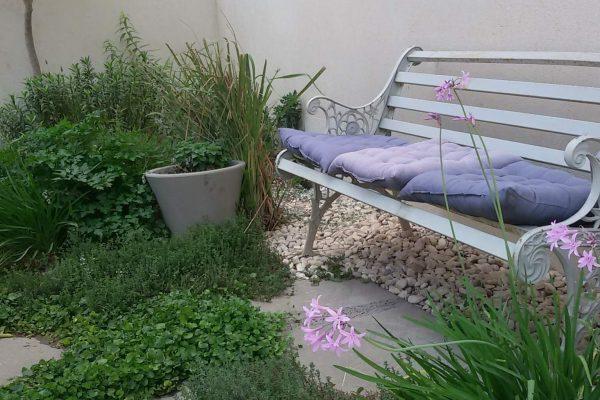 גינת תבלינים בגינה הפרטית