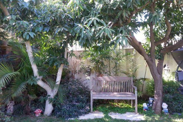 אווירה ואופי בגינה גינונים