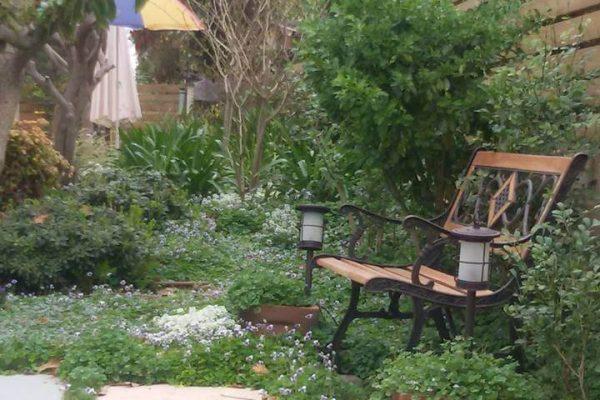 אווירה ואופי בגינה מחירים שאסור לפספס