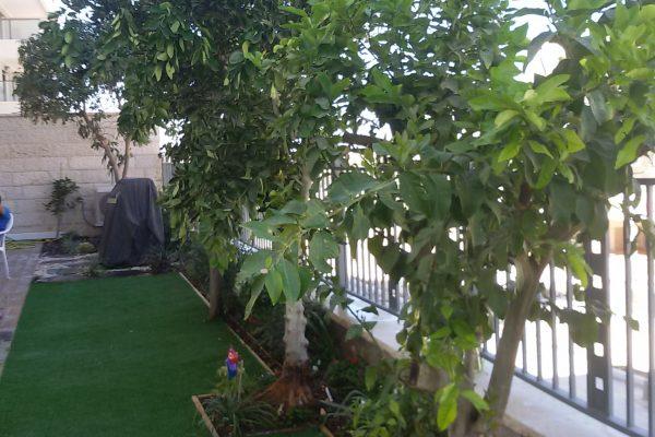 עיצוב והקמת גינות בדירות גן